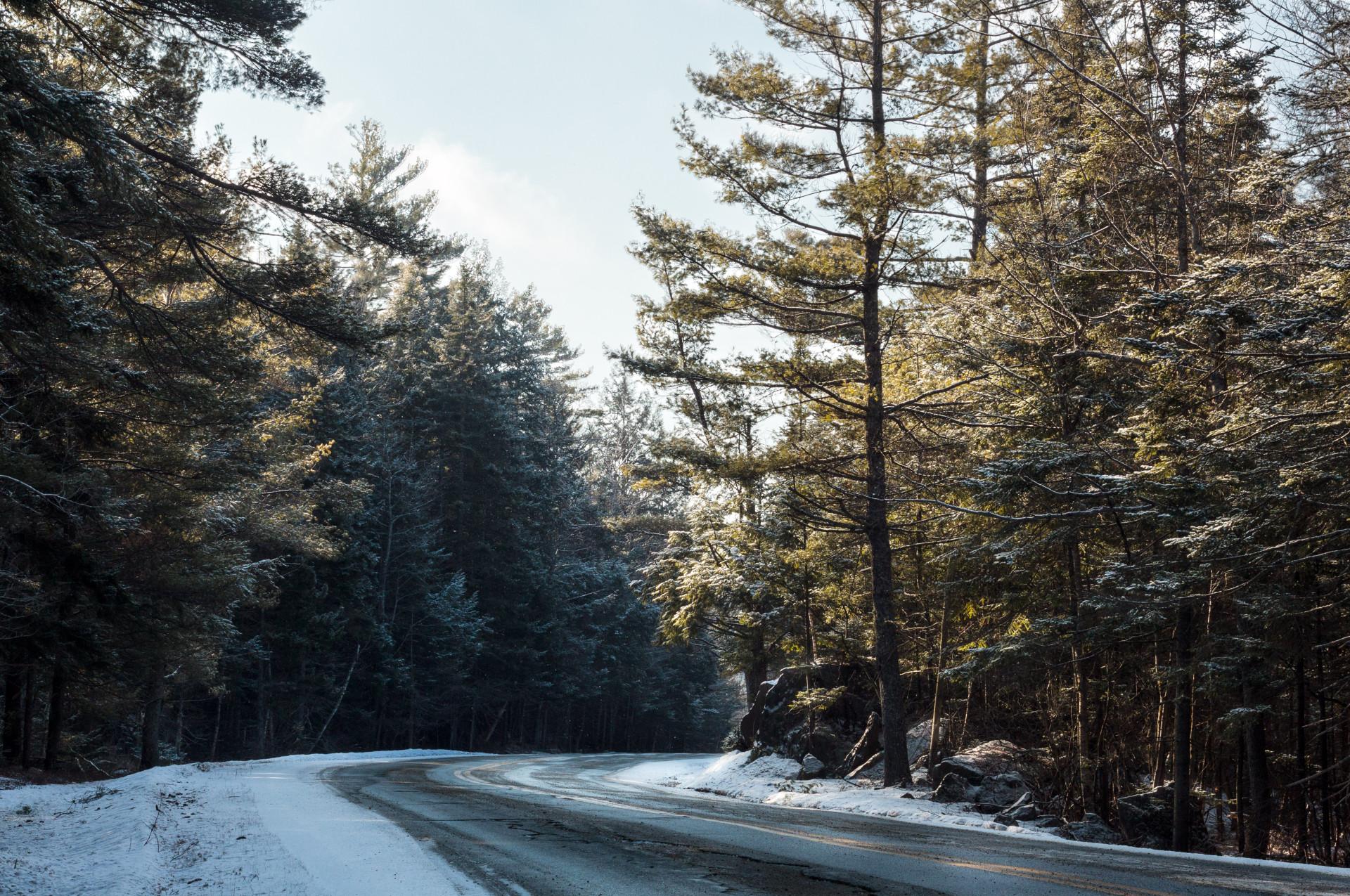 Pillsbury State Park, NH